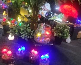 Mushroom Light Stall.