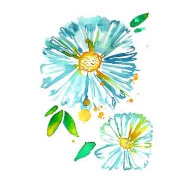 Lakeside-Blue-Daisies