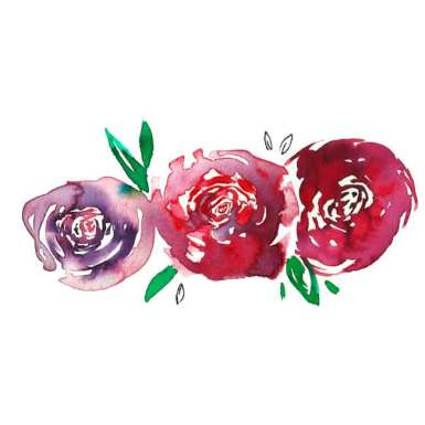 The-First-Original-Red-Christchurch-Roses